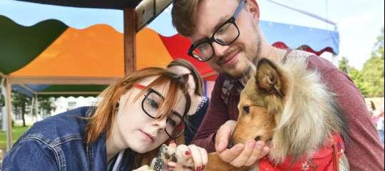 """Gli italiani amano gli animali domestici davvero """"come un figlio"""""""